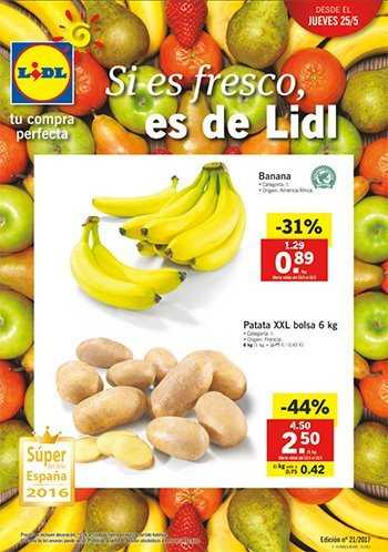 Cat logo lidl del 25 al 31 de mayo for Lidl catalogo ofertas