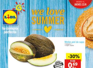 folleto-lidl-22junio