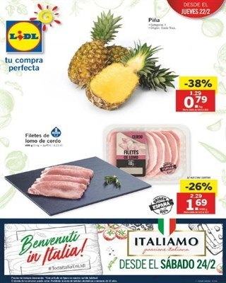 Cat logo lidl del 22 al 27 febrero productos italianos for Catalogo lidl granada