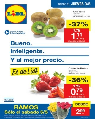 catalogo-lidl-5-mayo