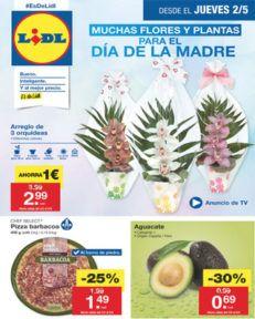 folleto-2-mayo-lidl