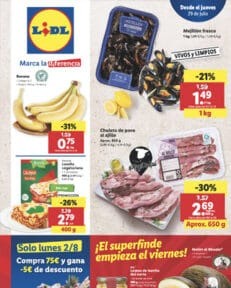 folleto alimentacion julio lidl 231x288 - inicio